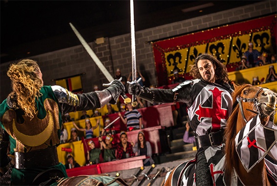 two knights sword fighting